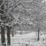 Sneeuw: code rood?